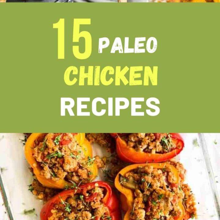 Paleo Chicken Recipes - 15 Easy Chicken Meals for Paleo Diet