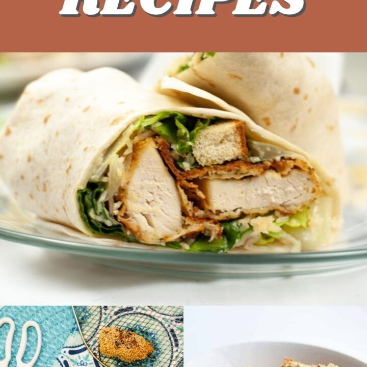 15 Quick and Easy Air Fryer Entree Recipes