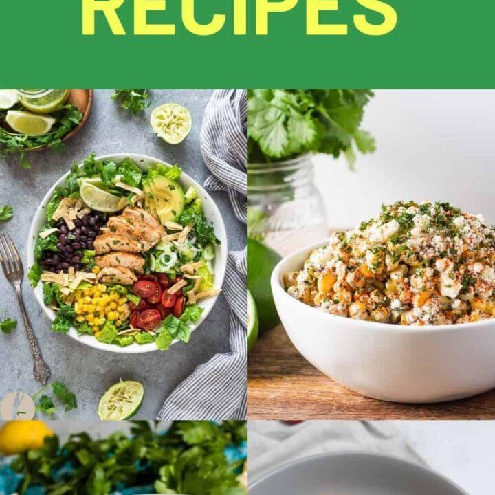15 Warm Salad Recipes   Healthy Salad Recipes