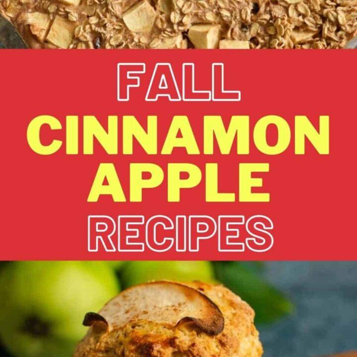 15 Cinnamon Apple Recipes   Healthy Fall Recipes