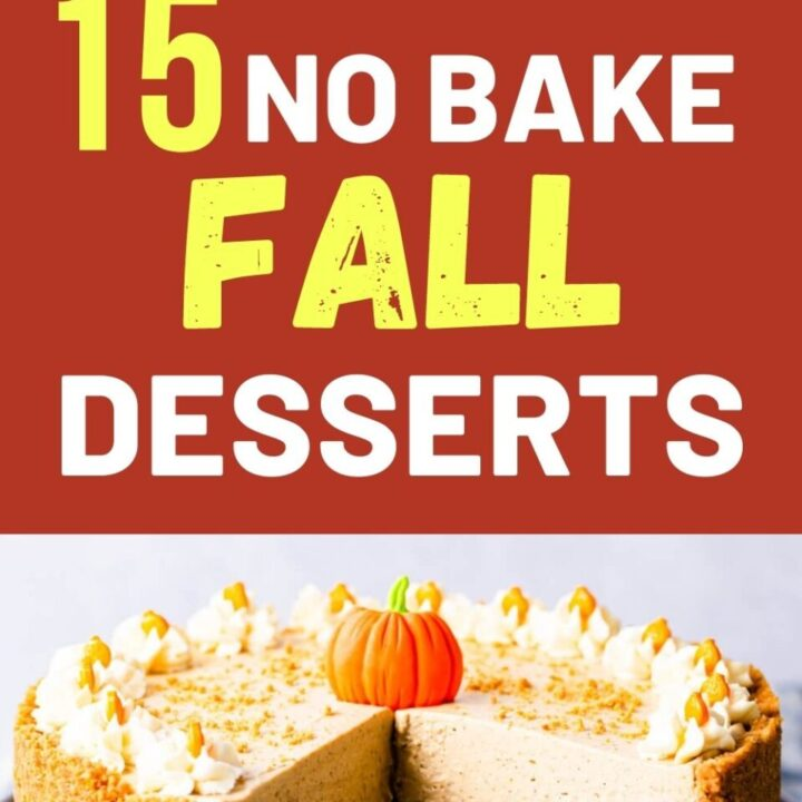 15 Delicious No Bake Fall Desserts   Easy Fall Recipes